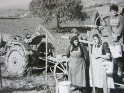 familie-hillabrand-generationen